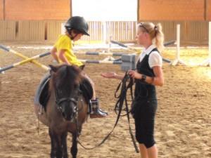 Reitunterricht auf Schulpferden